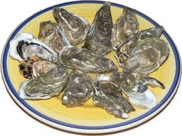 Oysters Individual